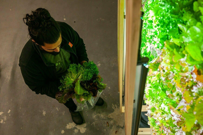 L'agriculture du futur : entre la tech et la terre