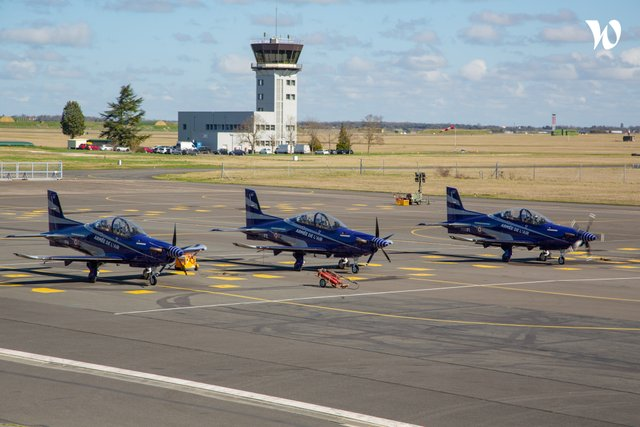 armée de l'Air et de l'Espace