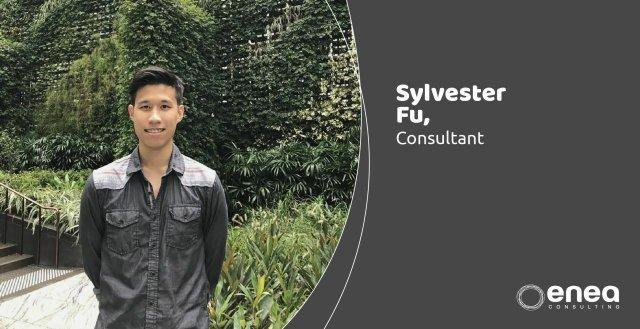 Meet Sylvester  - Enea Consulting