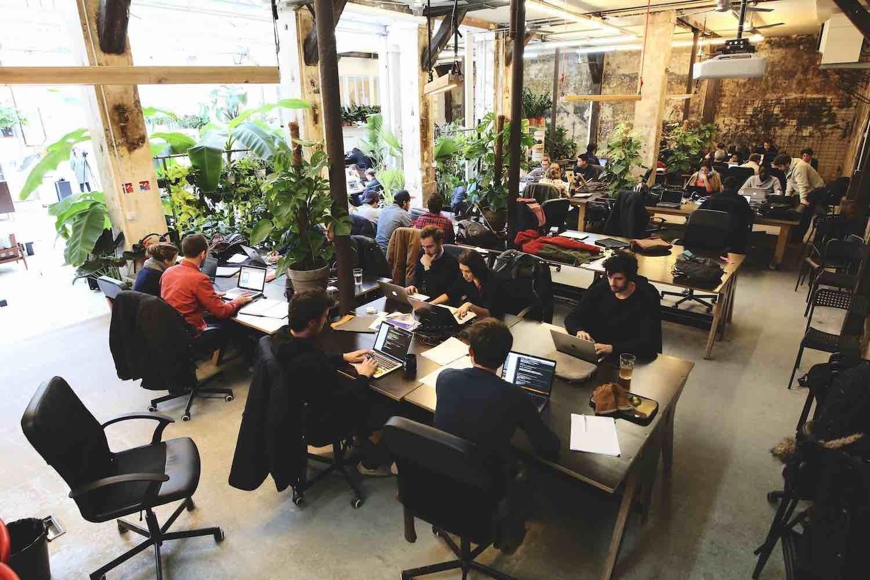 Lifeaz, Expensya, Sfeir... : les entreprises qui recrutent