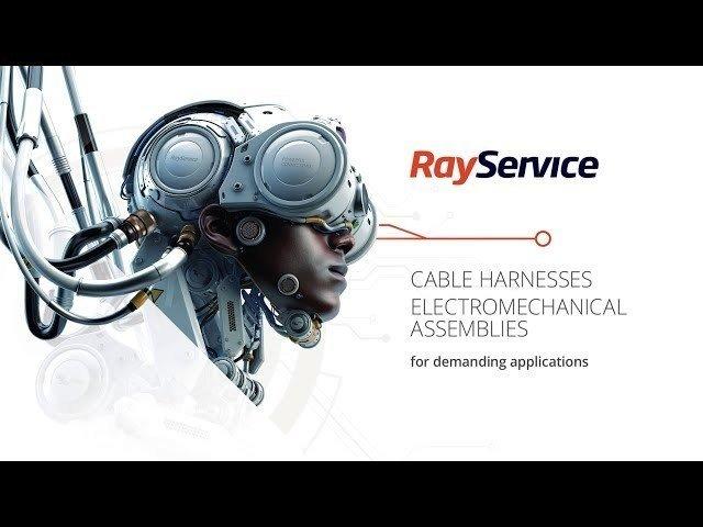 Ray Service - Ray Service