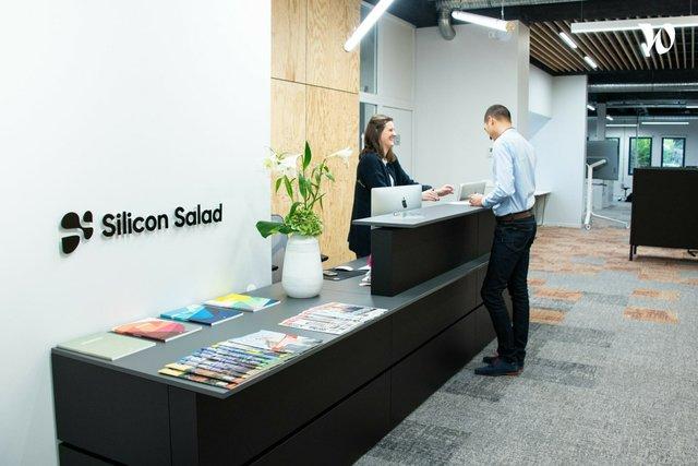 Silicon Salad