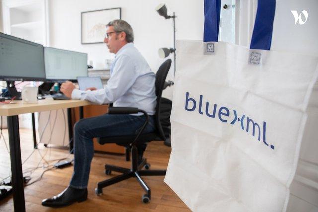 Bluexml