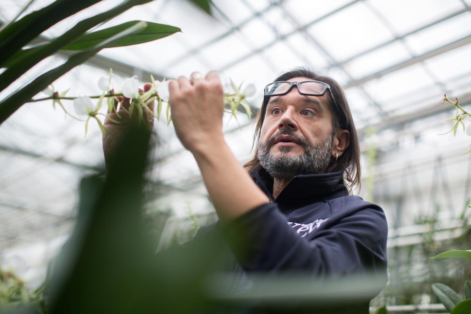 Meet Carlos Magdalena, the man on a horticultural mission