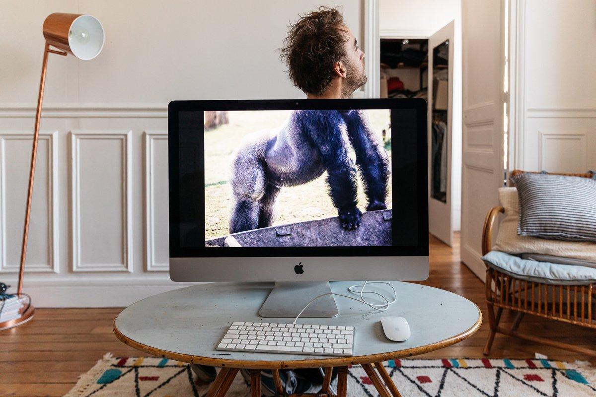 La crise profite-t-elle auxleaders « gorilles » ?