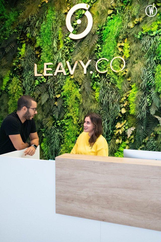 Leavy