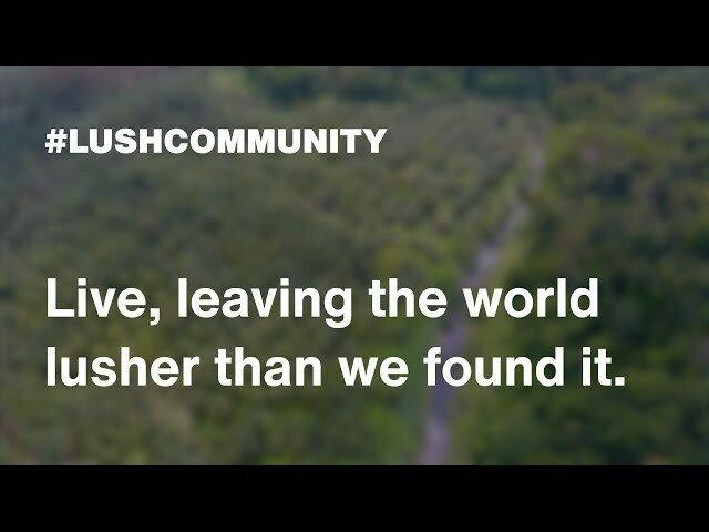 Talk by Ruth Andrade - Lush
