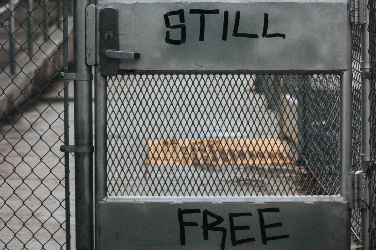Corée du Sud : 24h en prison pour échapper au stress du travail