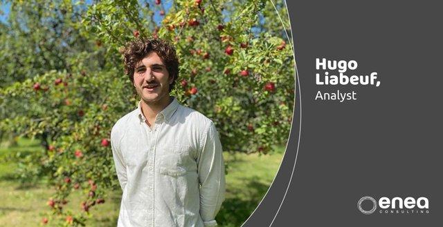 Meet Hugo  - Enea Consulting
